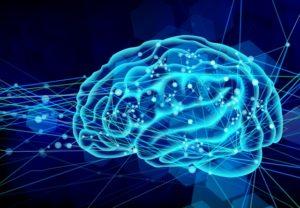 脳の情報伝達